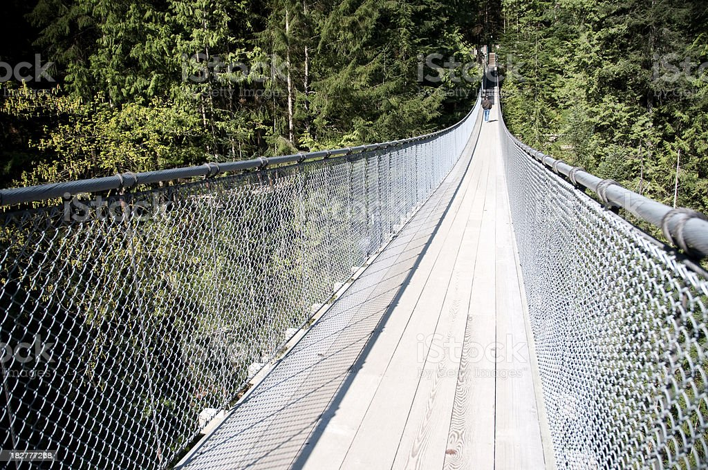 Vancouver Capilano Suspension Bridge stock photo