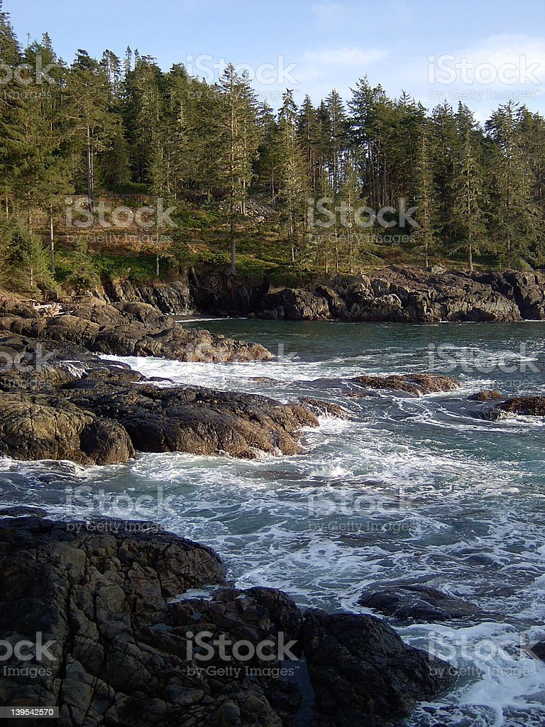Vancouver Island royalty-free stock photo