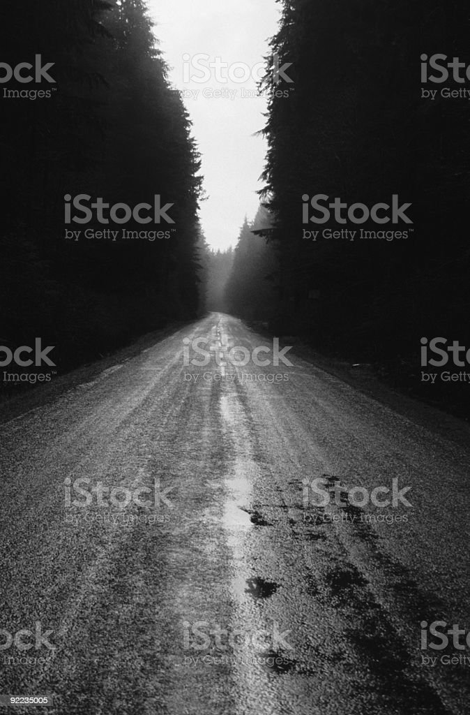 Vancouver Island Road royalty-free stock photo