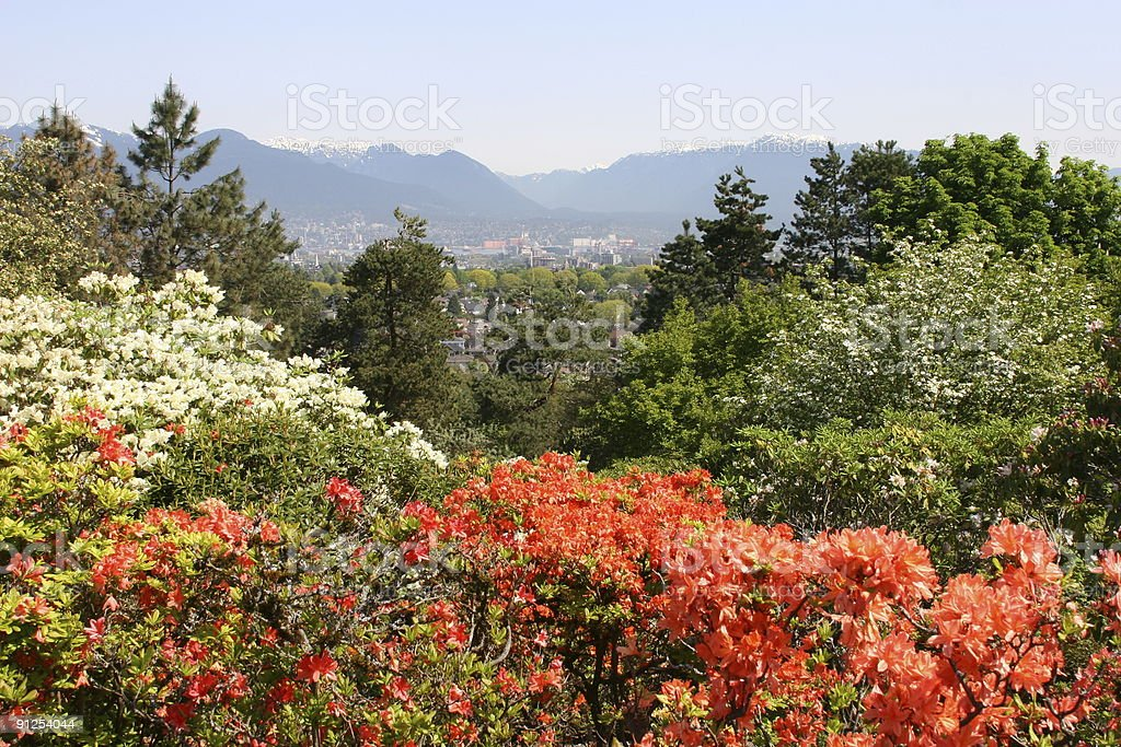 Vancouver Postcard_Queen Elizabeth Park stock photo