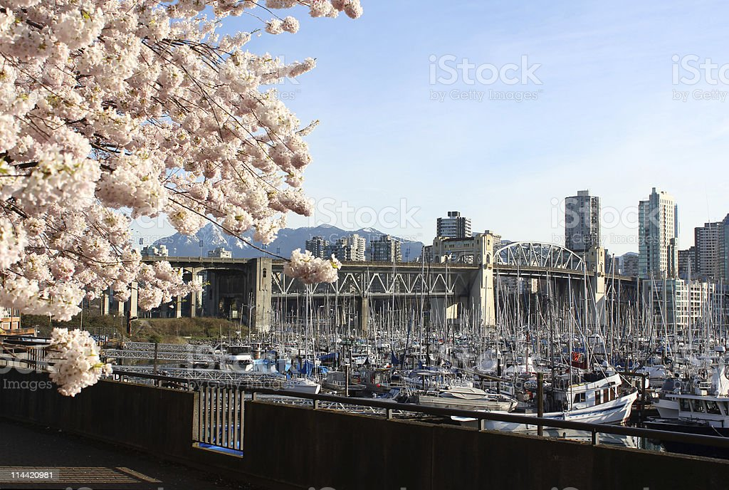 Vancouver Spring, British Columbia, Canada stock photo