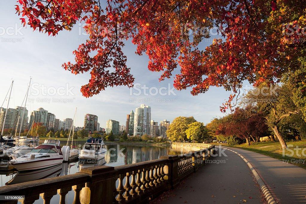 Vancouver  Stanley park stock photo