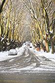 Vancouver Winter Residential Street