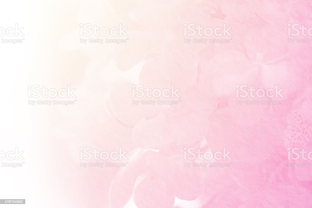 vanda orchid with mulberry paper texture stock photo