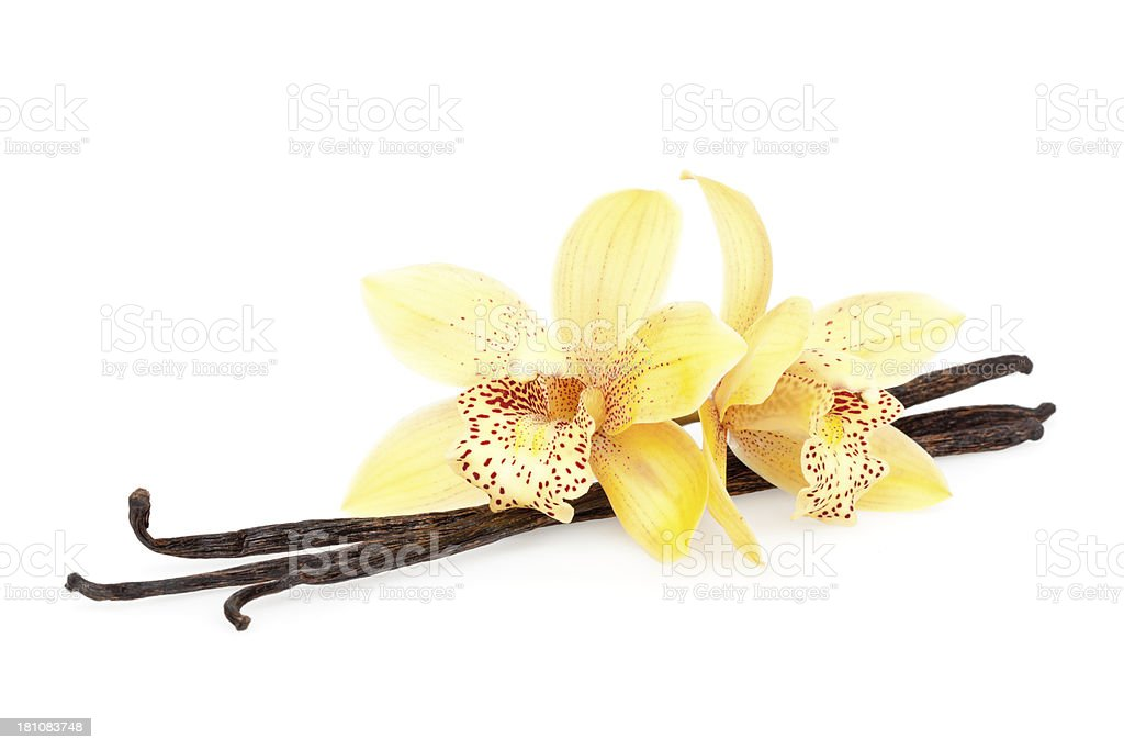 vanilla beans and flowers stock photo
