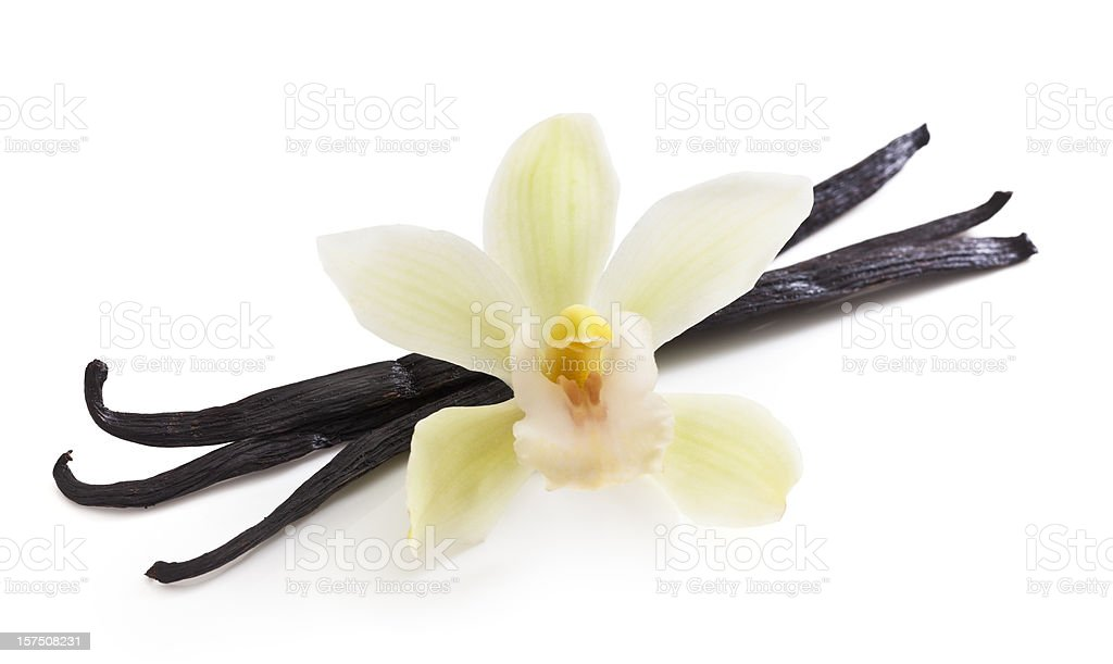 Vanilla Beans and Orchid stock photo