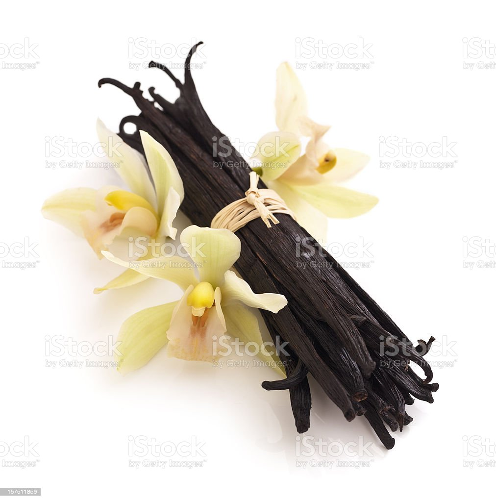 Vanilla Beans and Orchid royalty-free stock photo