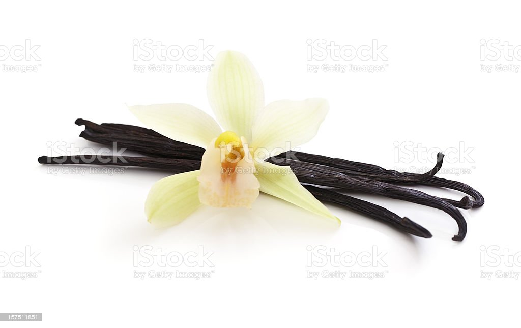 Vanilla Beans bunched together with a White Orchid on top stock photo