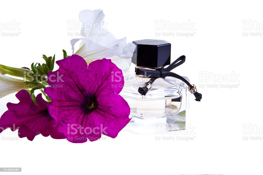 Ванильный свеча в черный чашка Стоковые фото Стоковая фотография