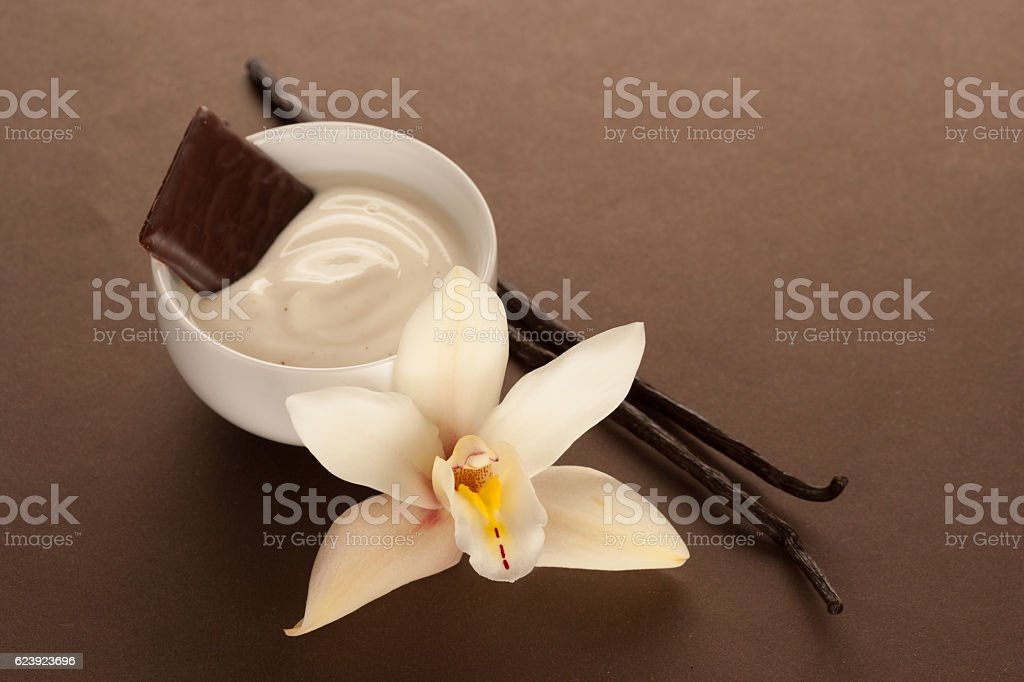 vanilla cream with vanilla beans flower and chocolate stock photo