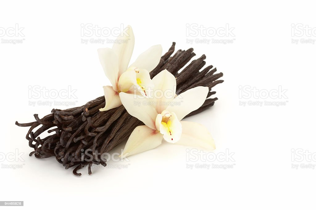vanilla flowered stock photo
