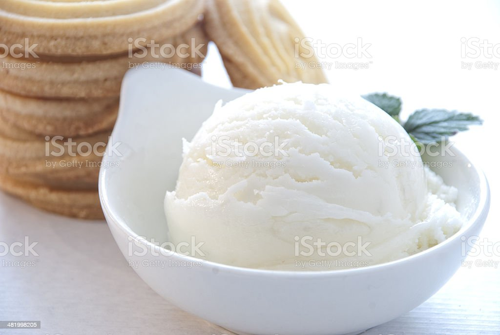 Vanilla Ice Cream and Cookies royalty-free stock photo