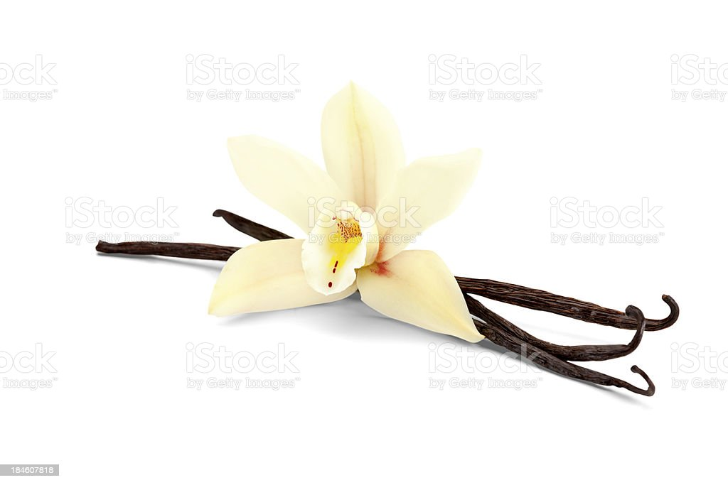 vanilla isolated on white stock photo