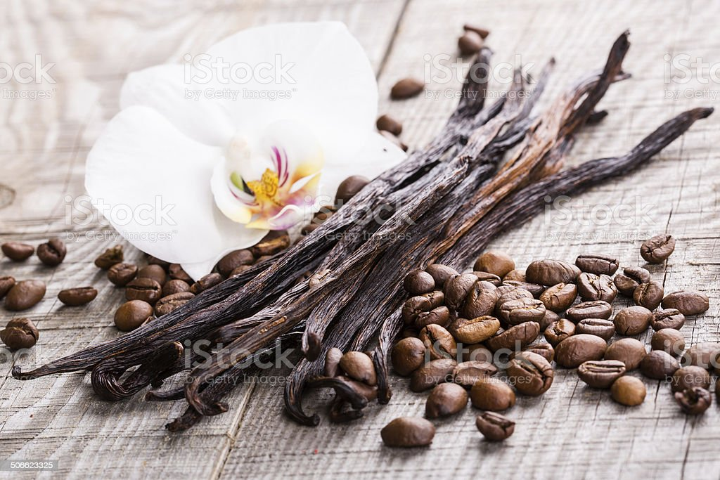 vanilla pods and coffee beans stock photo