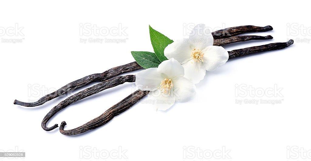 Vanilla sticks with flowers stock photo