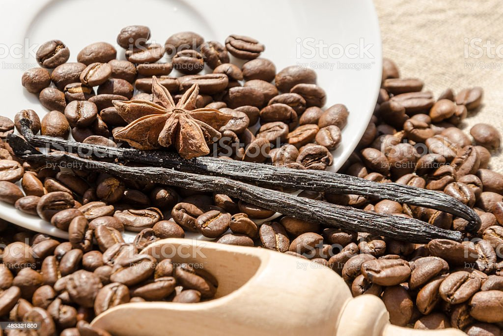 vanilla with coffee grains, cinnamon and aniseed stock photo