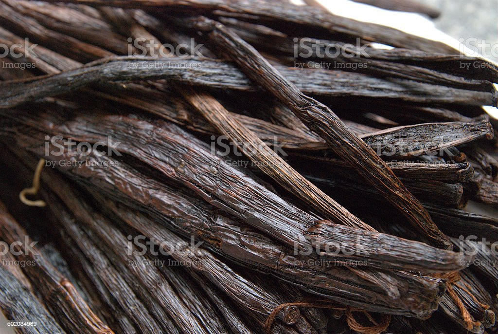 vanillabeans many vanilla beans - viele Vanielleschoten stock photo