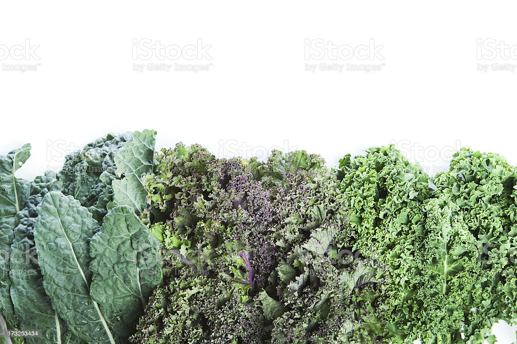 Varieties of Fresh Kale on White Background with Copy Space stock photo