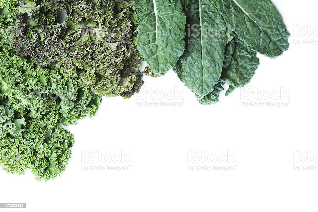 Varieties of Fresh Kale White Background with Copy Space Hz stock photo
