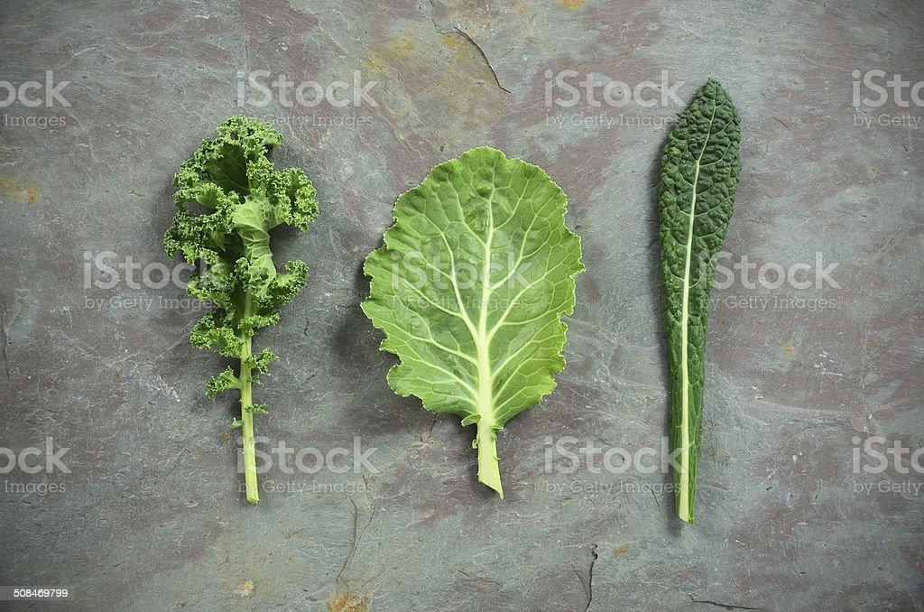 Varieties of Kale stock photo