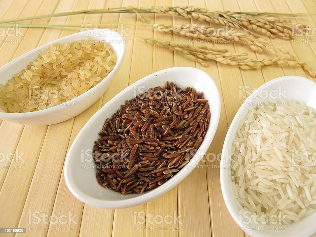 Varieties of rice and rice-panicles royalty-free stock photo
