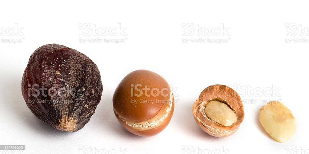 Variety of argan fruits assorted by size royalty-free stock photo