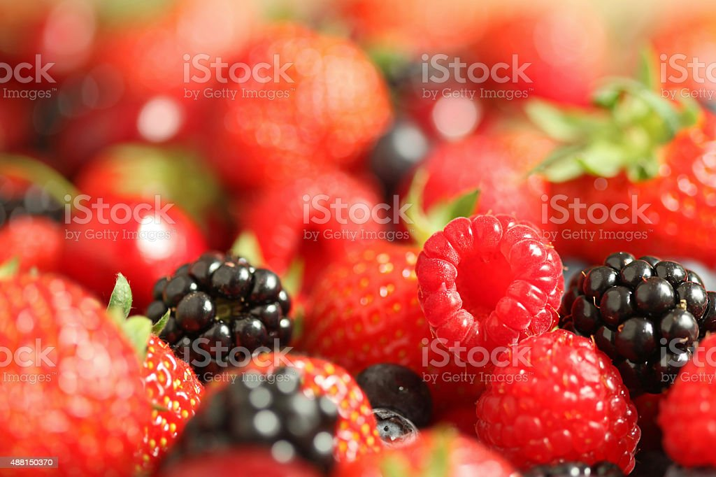 Variety of Berries Close-up stock photo
