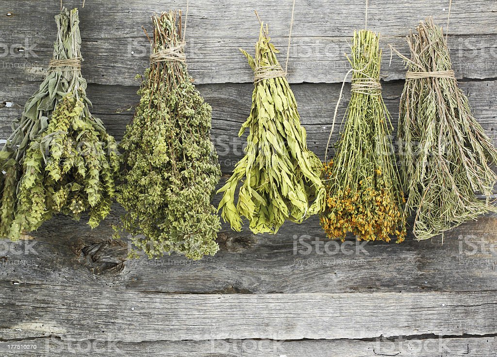 A variety of dried hanging herbs stock photo