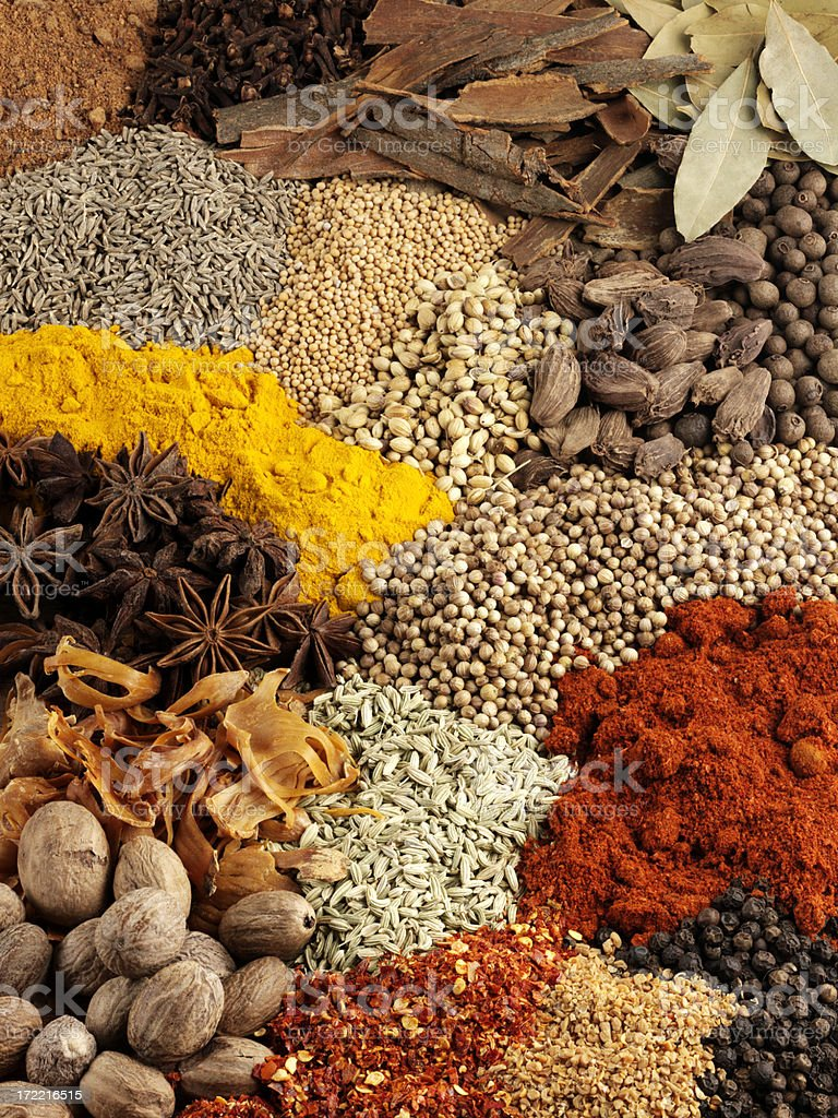 Variety of Dried Spice royalty-free stock photo