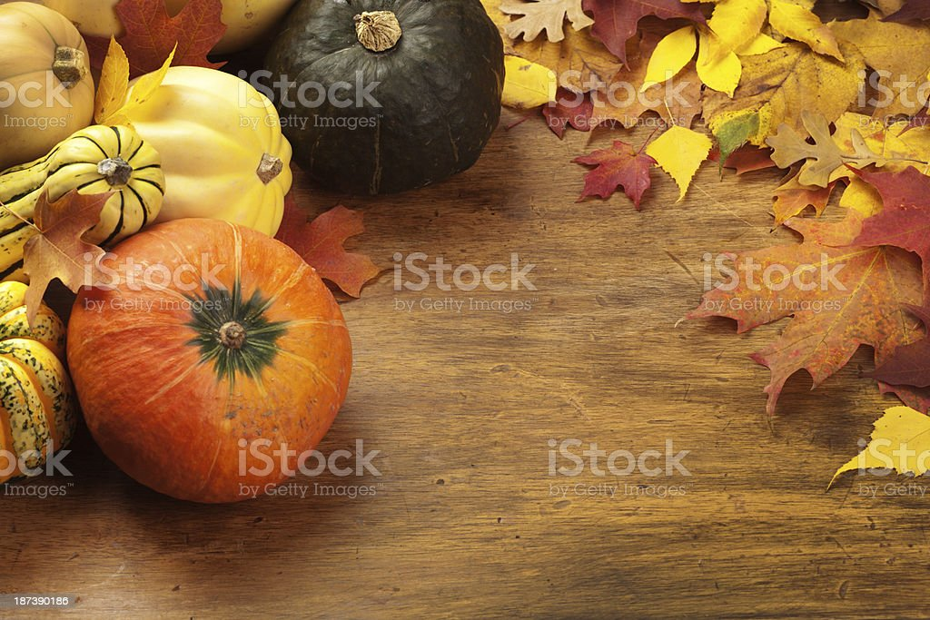 Variety of Fall Squashes Frame Border for Custom Text Copy royalty-free stock photo