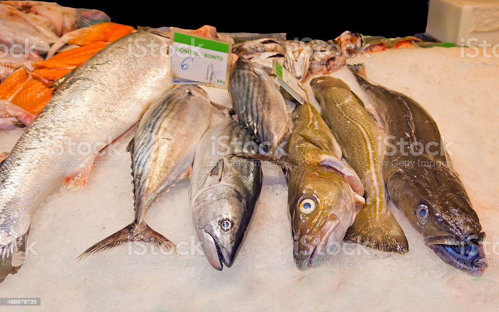 Variety of fresh fish in the market royalty-free stock photo