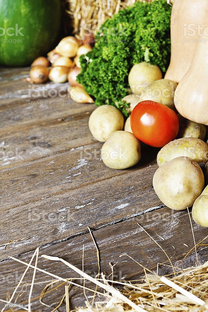 Variety of fresh vegetables on weathered wood royalty-free stock photo