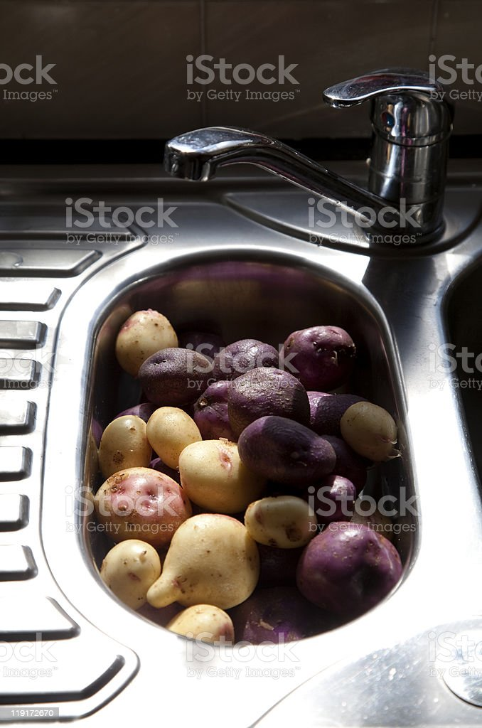 Variety of home grown potatoes ready for cooking stock photo