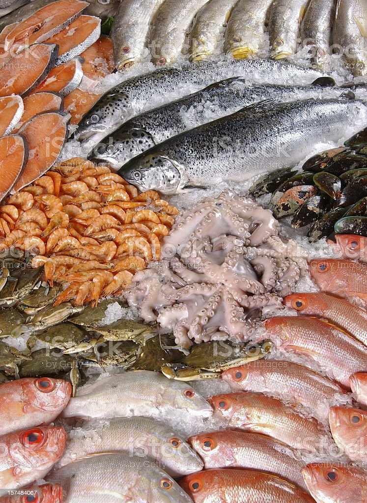 Variety of seafood in the market stock photo