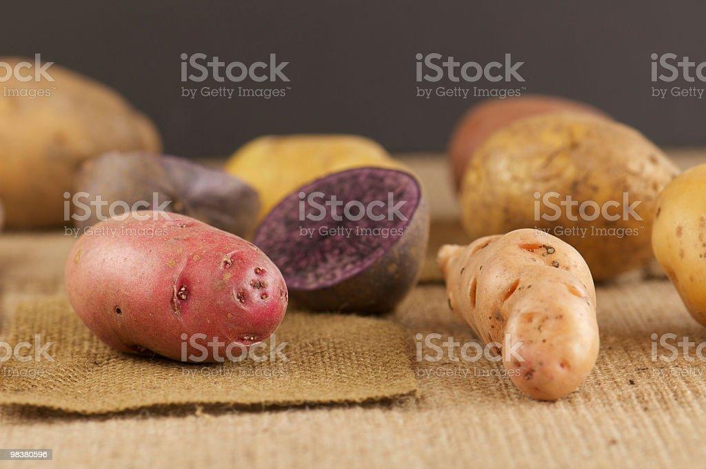 Variety of Whole Potatoes on Burlap royalty-free stock photo