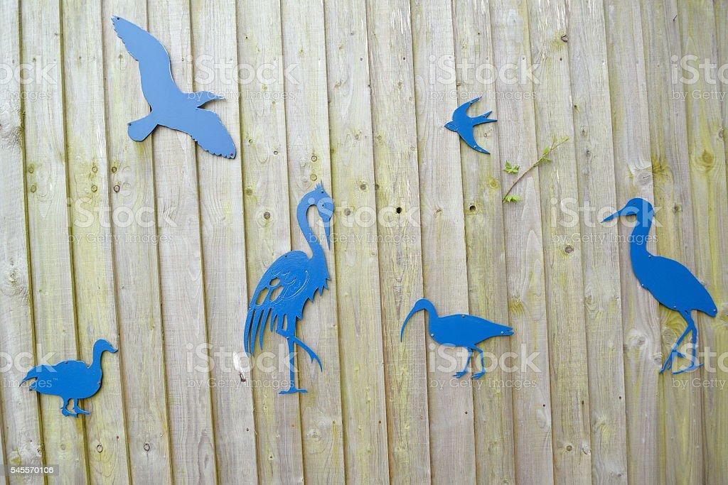Various birds stock photo