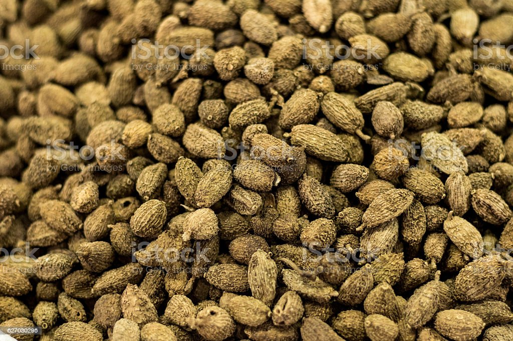 Various dried Chinese herbal medicine stock photo