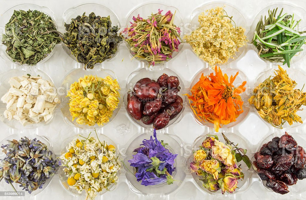 Various dried plants for making perfect tea stock photo