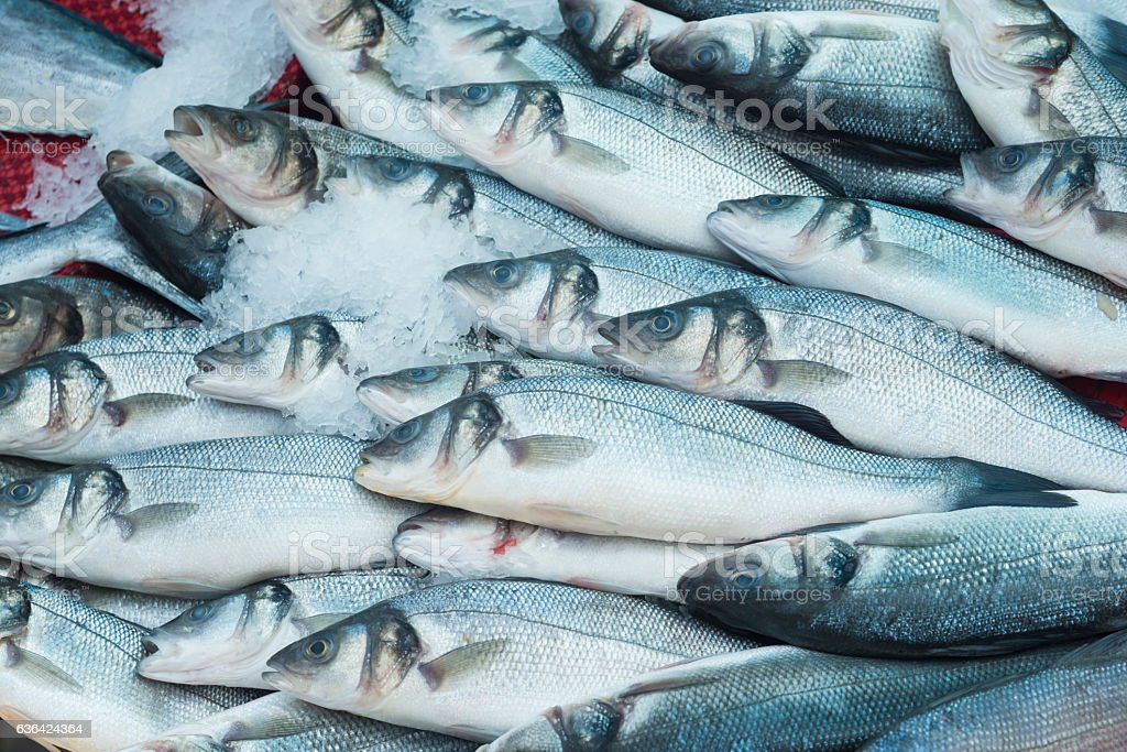 Various fresh fish and seafood stock photo