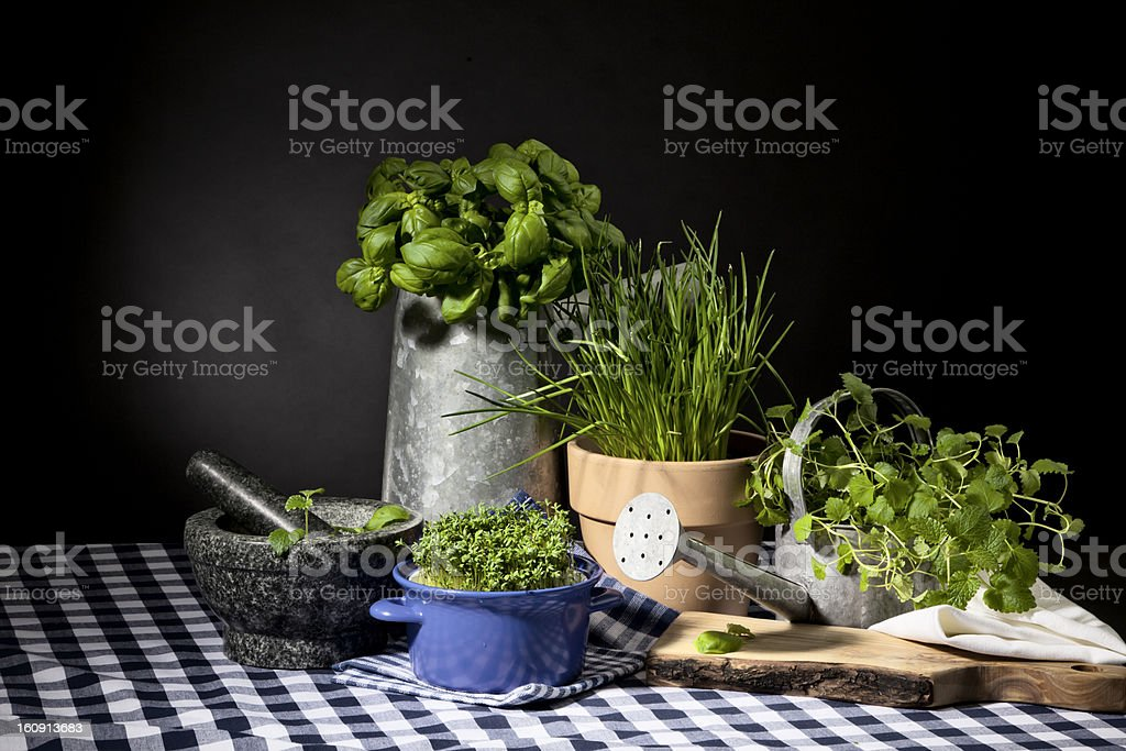 Various herbs, mortar and pestle royalty-free stock photo