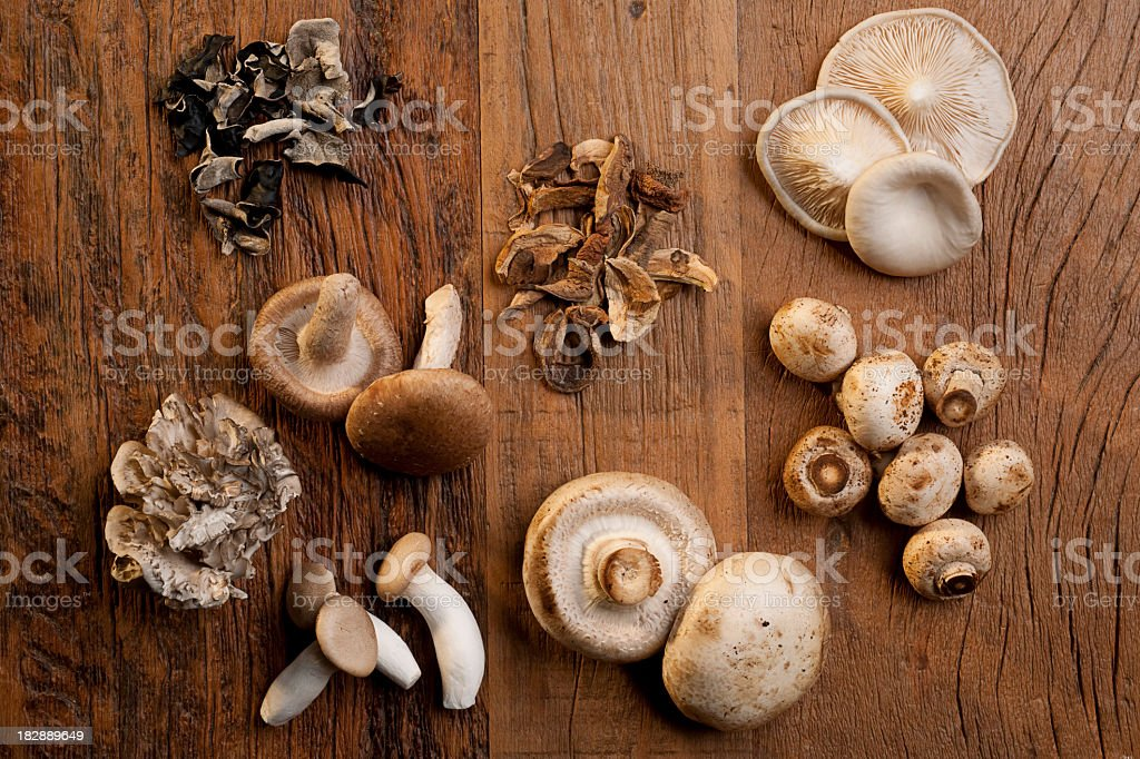 Various mushrooms used on cooking royalty-free stock photo