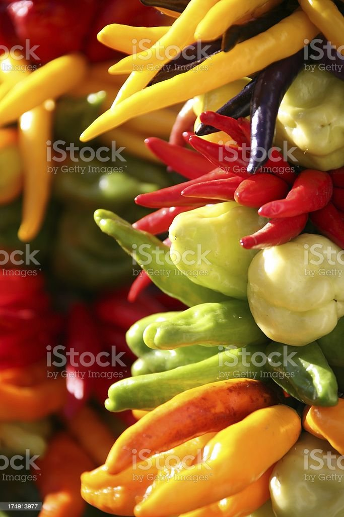 Various peppers bundled together royalty-free stock photo