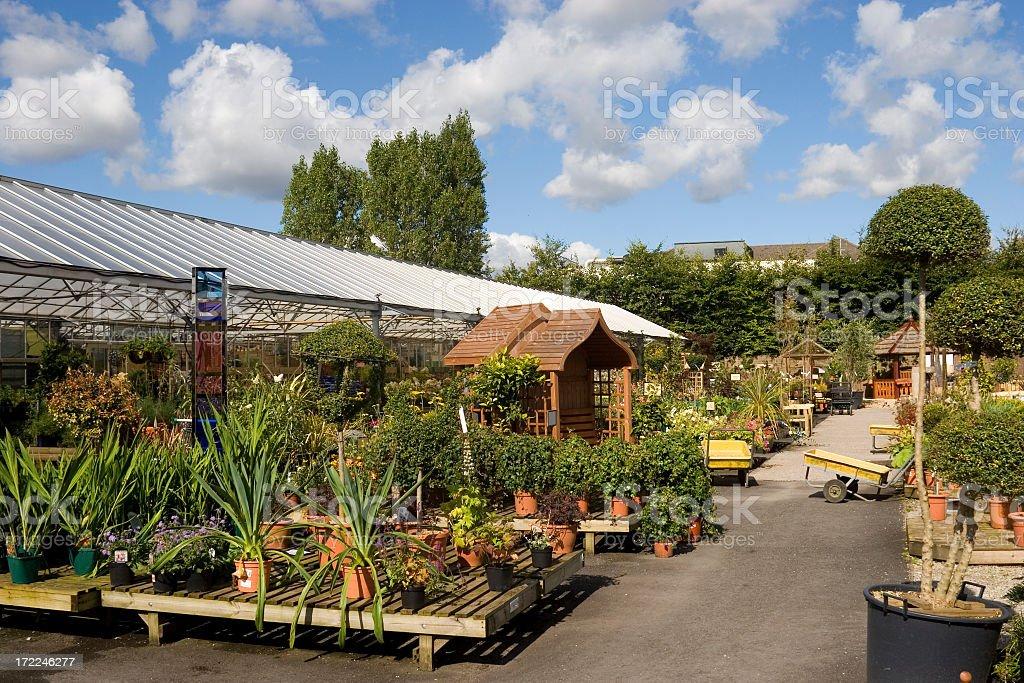 Various plants in a garden center royalty-free stock photo
