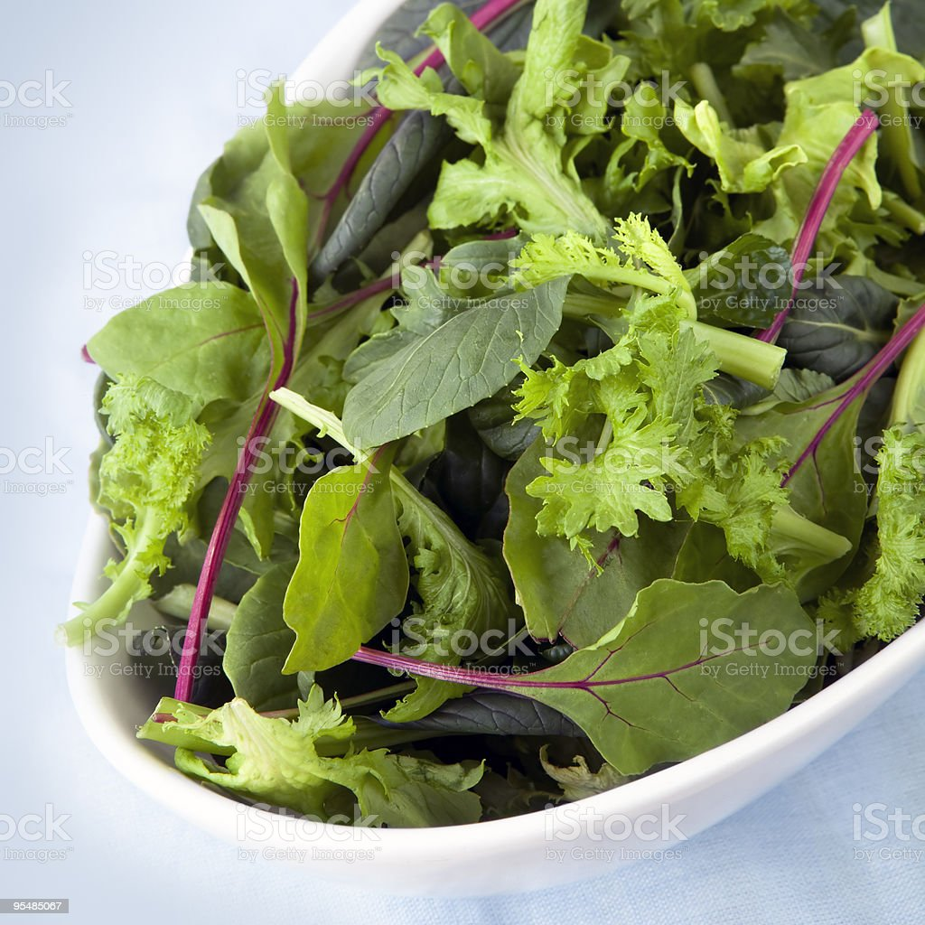 Various salad leaves in a white bowl  stock photo