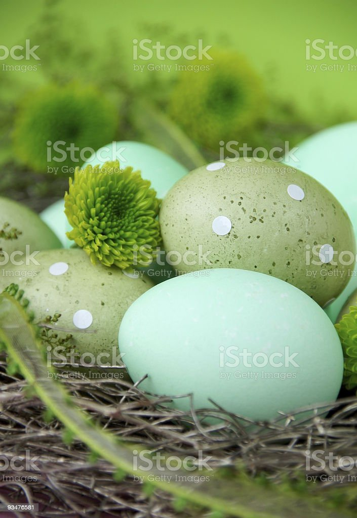Various shades of green Easter eggs royalty-free stock photo