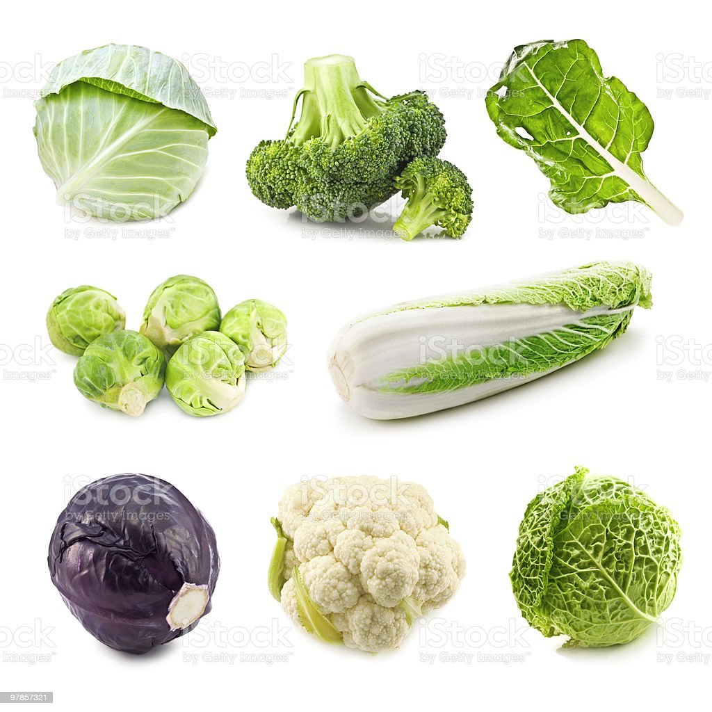 Various types of cabbage vegetables royalty-free stock photo