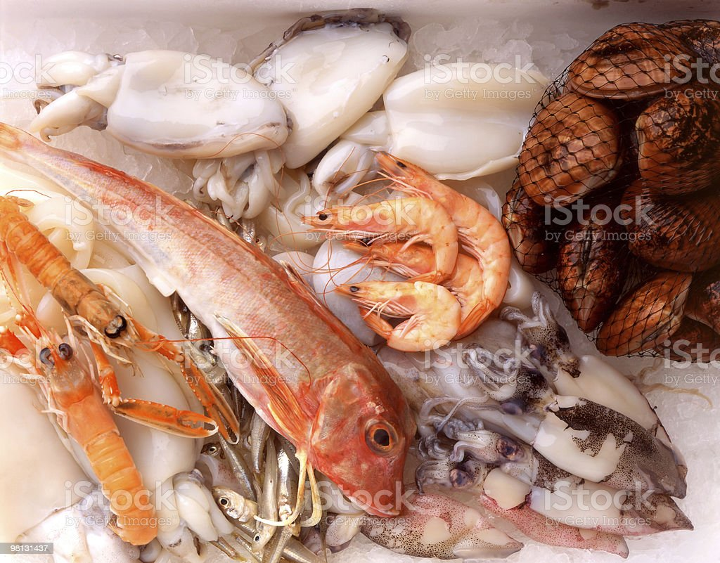 Various types of fish on ice royalty-free stock photo