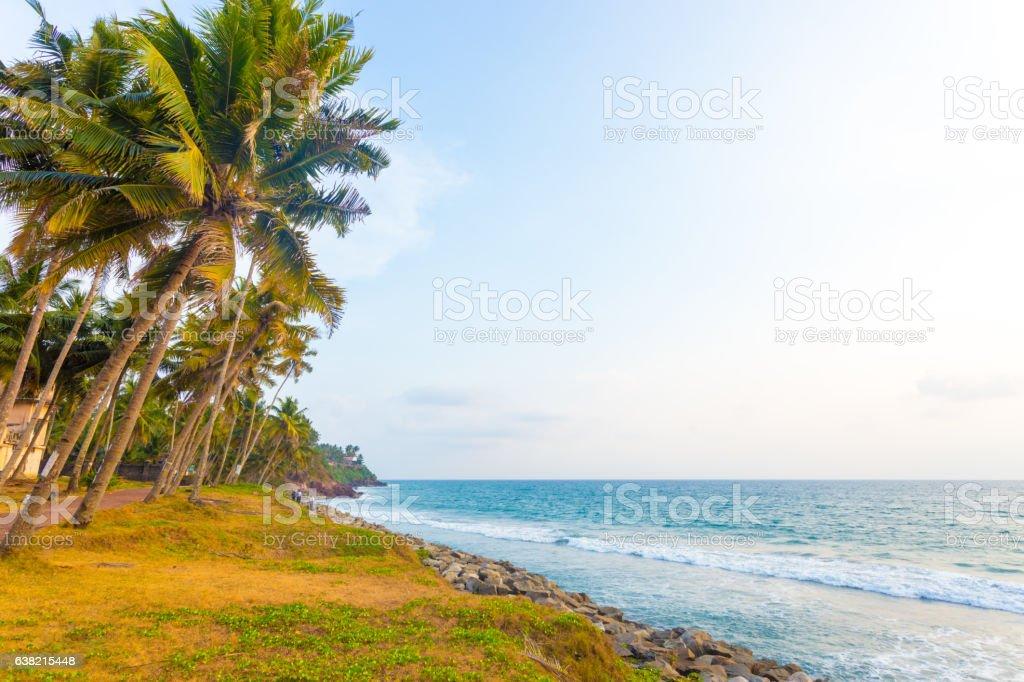 Varkala Coast Grass Palm Trees Ocean H stock photo