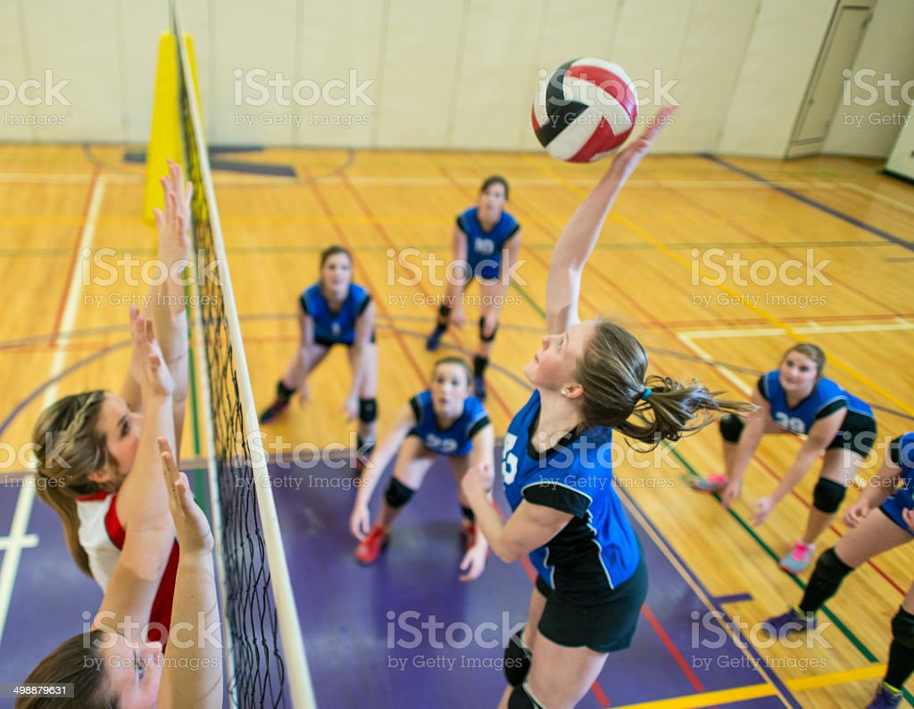 Varsity Volleyball stock photo