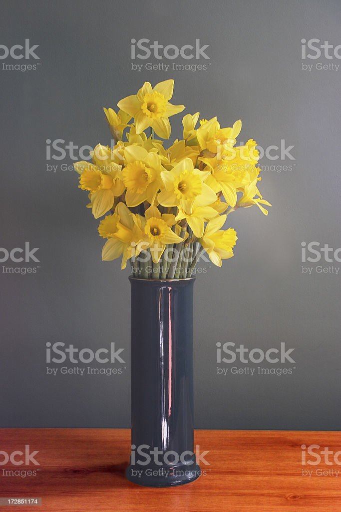 Vase of daffodil flowers royalty-free stock photo